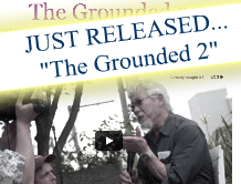 The Grounded 2