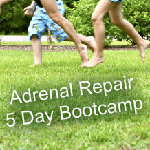 Adrenal Fatigue Bootcamp